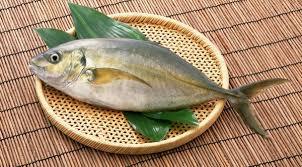 صادرات ماهی جنوب حلوا